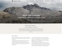 Webseite Softwareentwickler