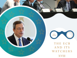 Broschüre – The ECB and its Watchers